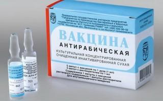 Антирабическая вакцина от бешенства