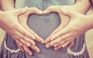 15 неделя беременности (2-й триместр) – мама и малыш