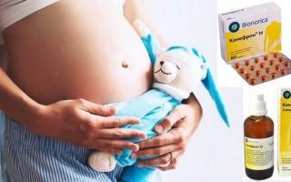 Канефрон при беременности: отзывы и инструкция