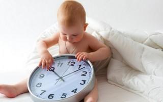 Режим дня ребенка в 7 месяцев: как установить