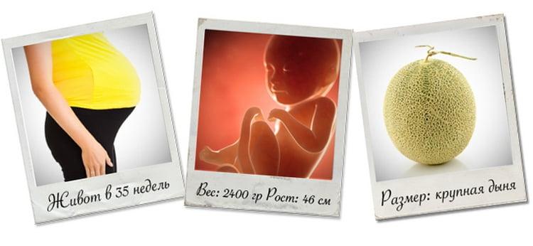 Узнайте также, какой вес ребенка на 35 неделе беременности, что происходит с малышом и как идет развитие плода на этом сроке.