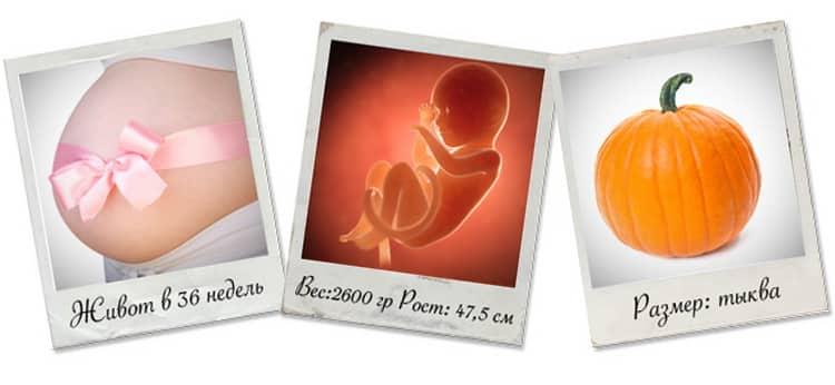 Что будет если пройдут роды на 36 неделе беременности