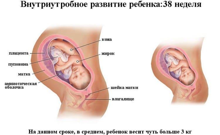 Распознайте признаки приближающихся родов при сроке в 38 недель беременности.