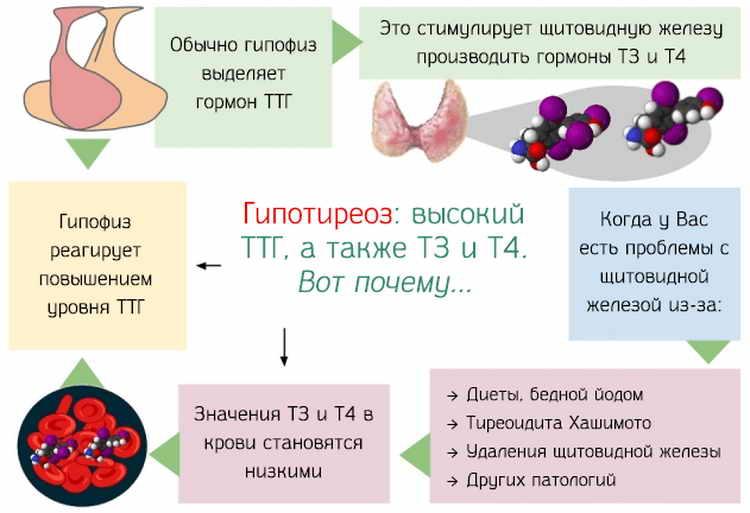 гипотиреоз при беременности последствия