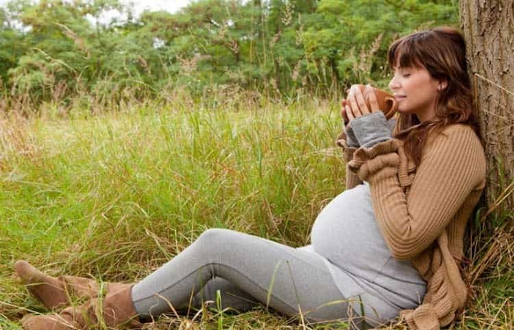 Самые лучшие успокоительные средства для беременных это самоконтроль, медитация, прогулки, организация режима питания и дня.