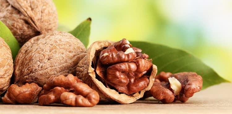 можно ли употреблять в пищу беременным грецкие орехи