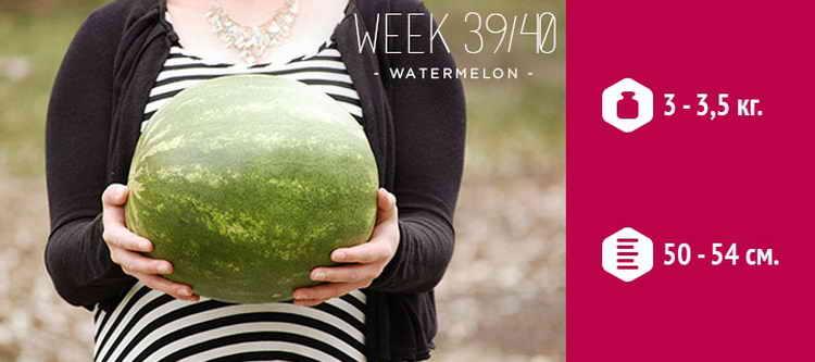 39 неделя беременности предвестники родов у первородящих