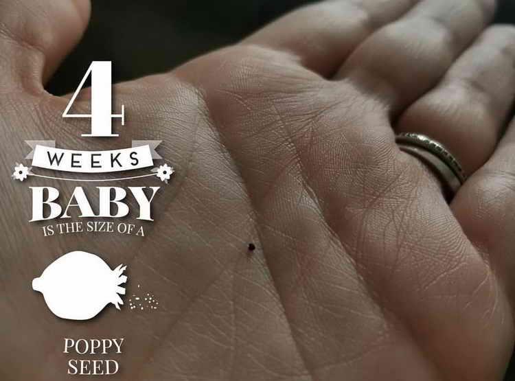 4 неделя беременности признаки и ощущения