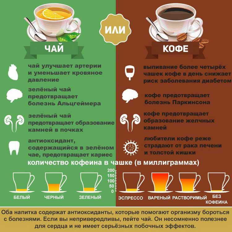 можно ли беременным пить зеленый чай