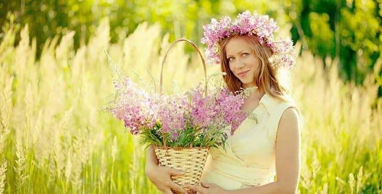 Иван-чай при беременности: польза и вред