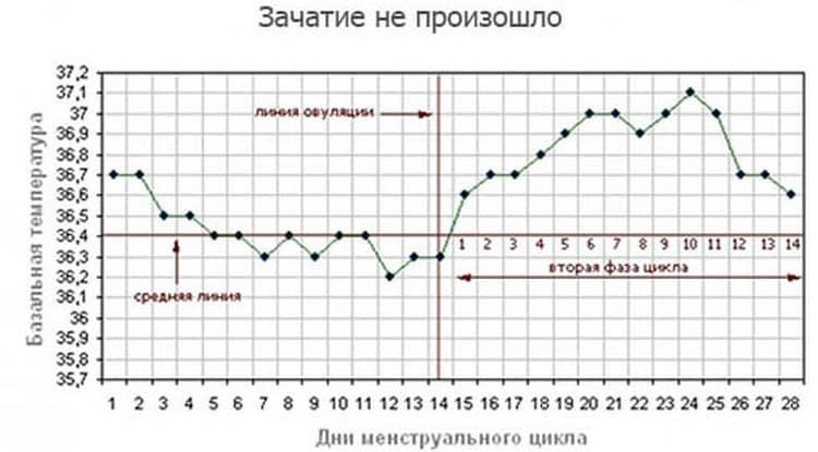 Посмотрите, как по базальной температуре определить беременность.