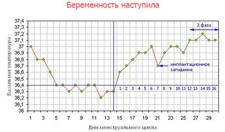 График базальной температуры при беременности в принципе важен приблизительно до 20-й недели.
