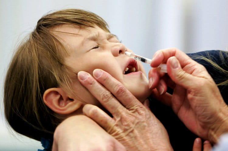 Вакцина против гриппа вводится либо интраназально, либо внутримышечно.