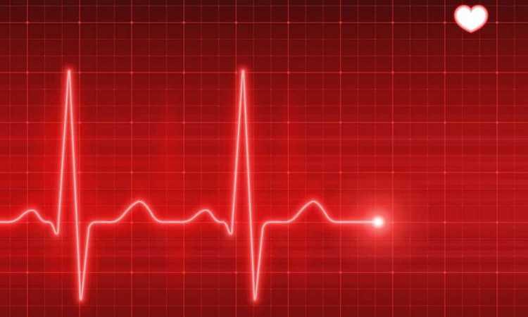Говорят, что от частоты сердечных сокращений зависит и пол малыша.