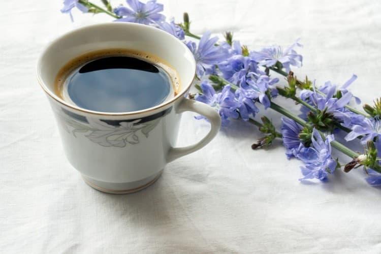 Если ребенок реагирует хорошо, то чашка цикория раз в несколько дней будет полезна кормящей маме.