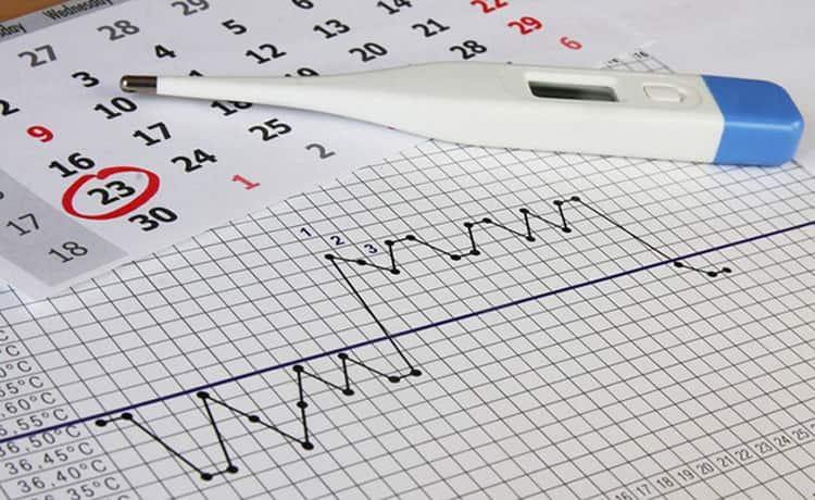 Все о том как измерять базальную температуру