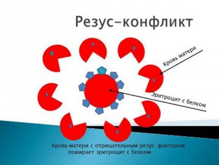Почему происходит конфликт резус факторов