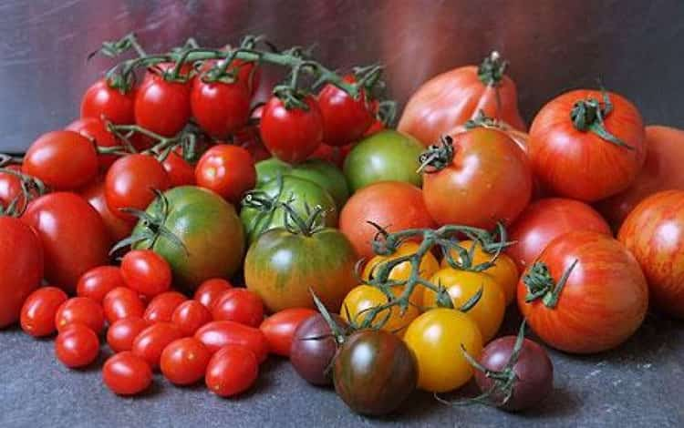 Чем полезны помидоры при грудном вскармливании