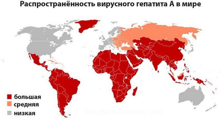 распространенность вирусного гепатита А в мире