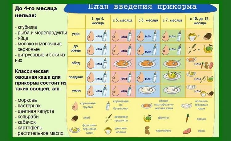 Детальная схема когда вводить прикорм при искусственном вскармливании