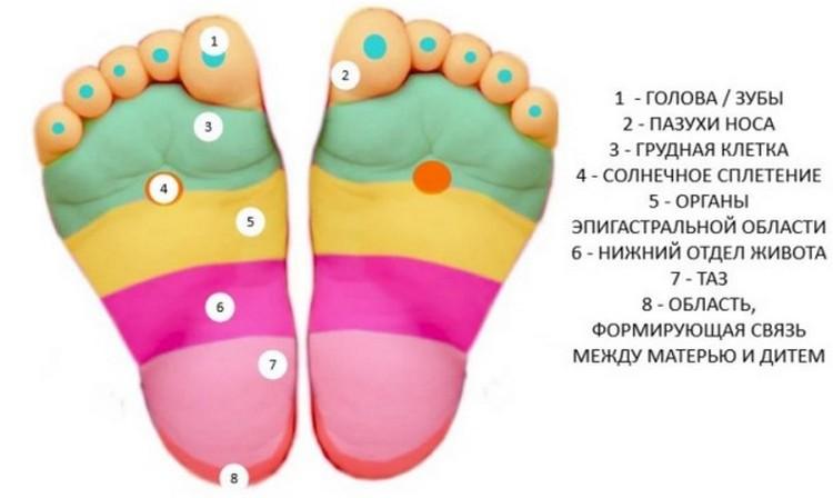 на стопах, как известно, имеются различные точки, отвечающие за конкретные органы младенца.