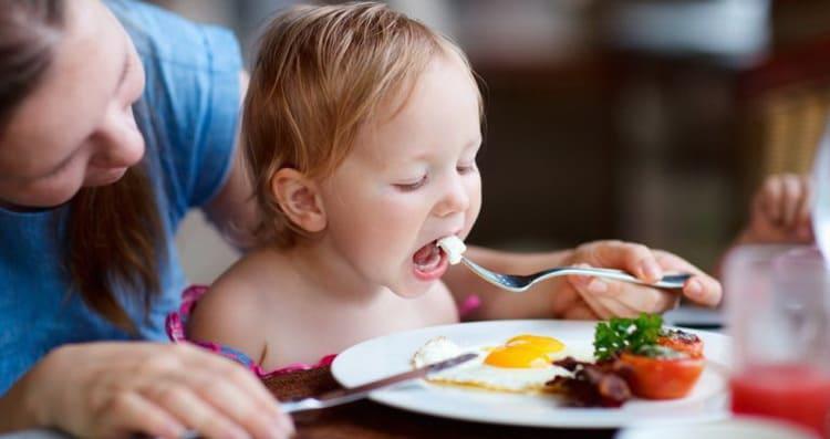 Зачем нужен педагогический прикорм