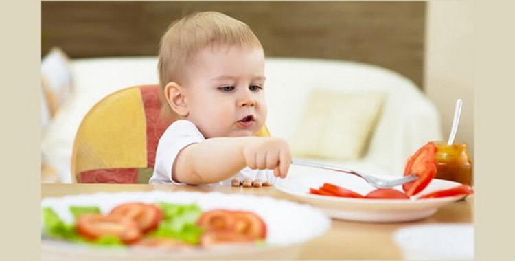 В каком возрасте можно начинать педагогический прикорм