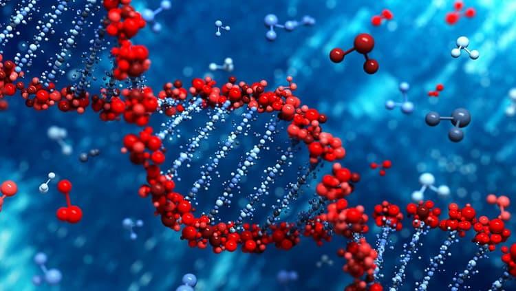 Как проводят генетический скрининг новорожденных