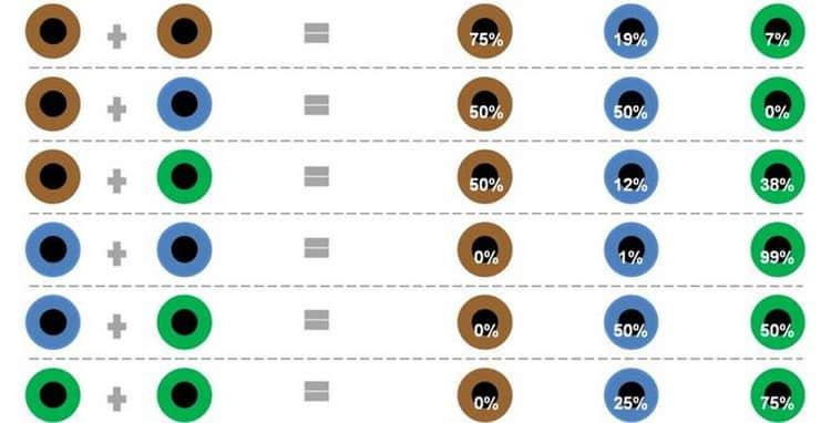 Какого цвета чаще всего глаза новорожденных