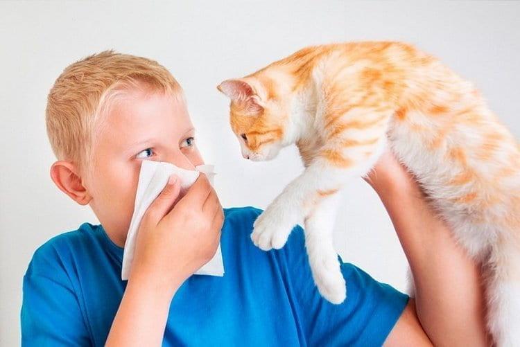 Есть несколько способов, как распознать аллергический кашель у ребенка.