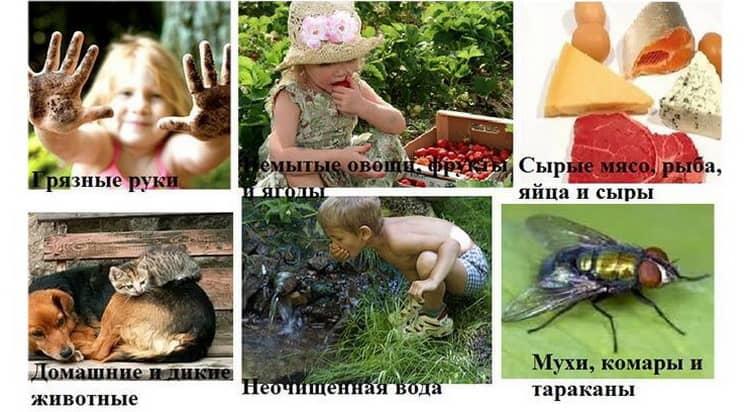 в статье вы узнаете как вывести глисты у ребенка