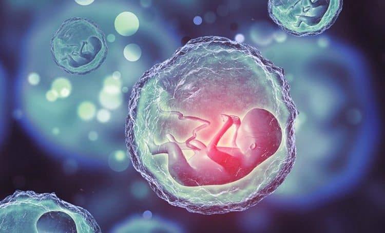 Об имплантации эмбриона могут говорить определенные ощущения и признаки.