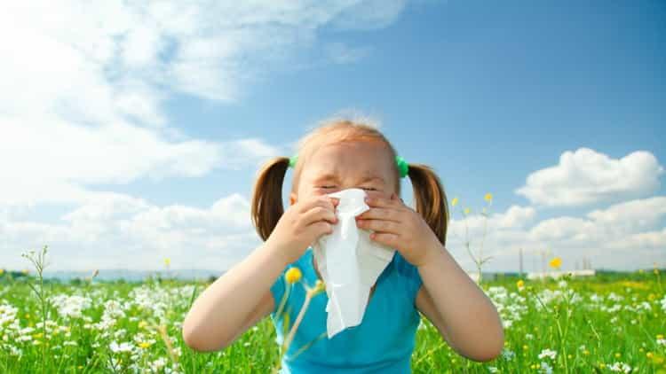 Аллергия на цветение: симптомы у детей