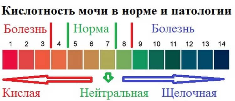 расшифровка анализа мочи у детей: таблица