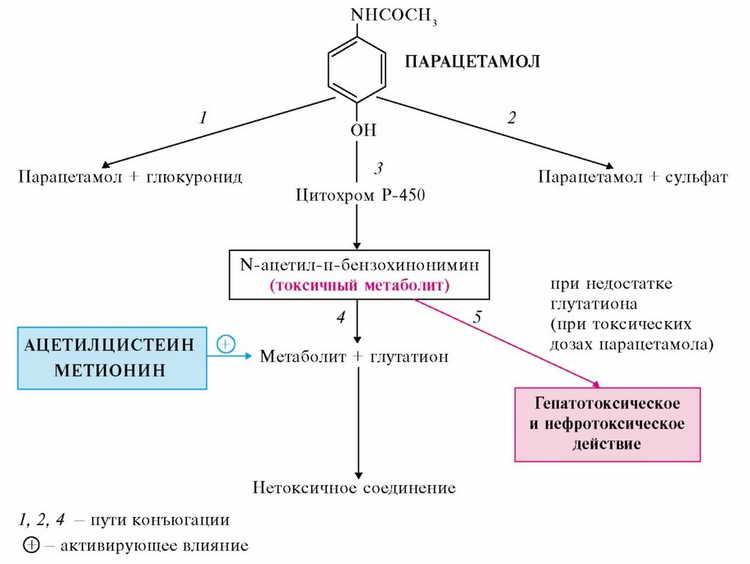 парацетамол инструкция по применению для детей таблетки
