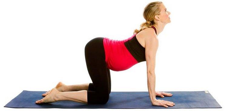 Для спины будет очень полезным упражнение кошечка.