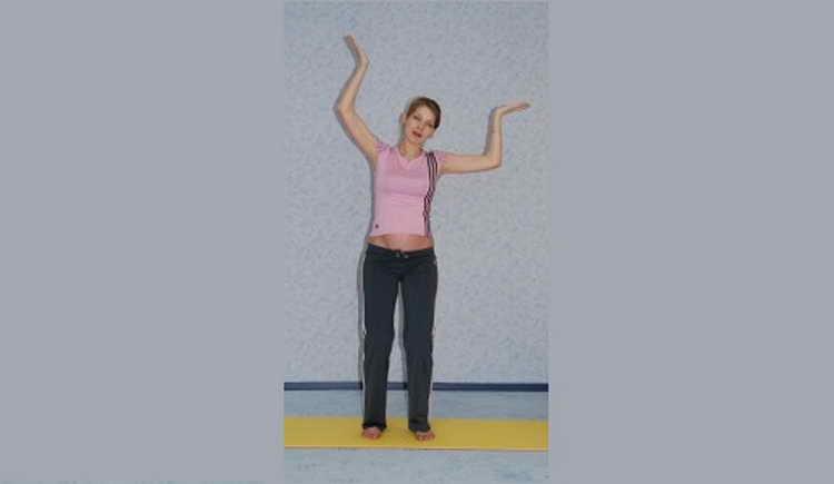 гимнастика для беременных 2 триместр руки