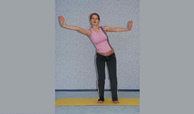 гимнастика для беременных 2 триместр для суставов